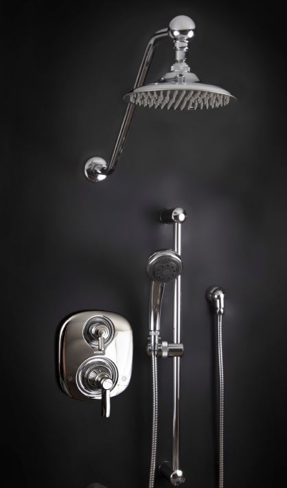 Moen Hand Held Shower Heads